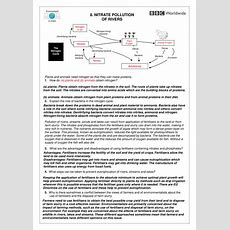 Nutrients The Carbon Cycle Worksheet By Harwooda  Uk Teaching Resources Tes