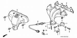 Exhaust Manifold  1  For 1994 Honda Accord Sedan