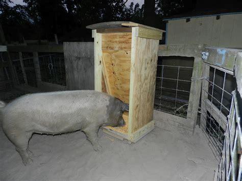hog feeder plans the pioneer pig feeder
