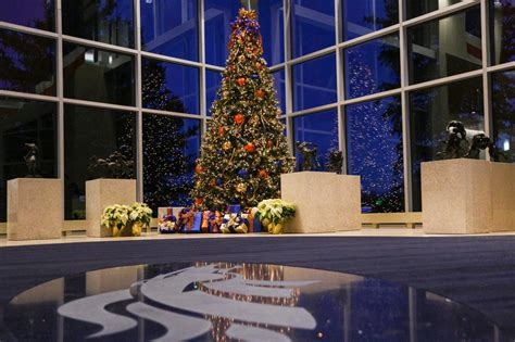 denver christmas trees broncos finish on top in decorating christmas trees 3074