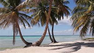 Desert Island In The Ocean Stock Footage Video 4898036 ...