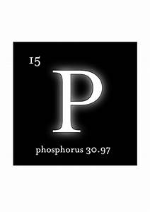 1000+ images about Phosphorus on Pinterest | Heart disease ...