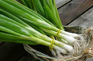 10 Veggies You Can Grow From Scraps