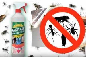 Barrage Aux Insectes Gifi : avis et opinions sur barrage aux insectes ~ Dailycaller-alerts.com Idées de Décoration