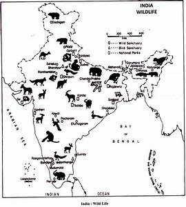 Wildlife in India: Biosphere Reserves and Conservation ...