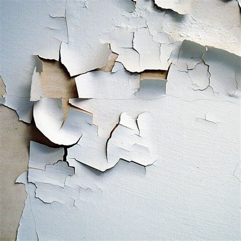 asbestos abatement lead abatement nyc flat rate junk