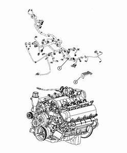 2010 Dodge Ram 1500 Wiring  Engine   Dh5   Shift  Case