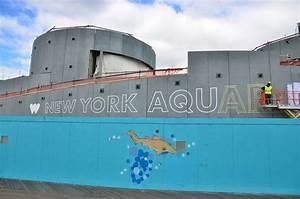 Newsroom > Home > NY Aquarium Picture Blog