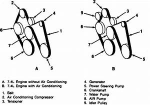 1983 Chevy 454 Engine Belt Diagram Full Hd Version Belt