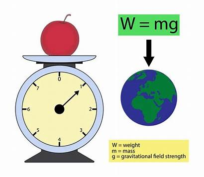 Mass Weight Difference Between Science Mg Diagram