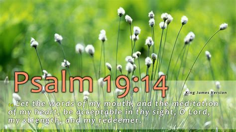 psalms   wallpaper wallpapersafari