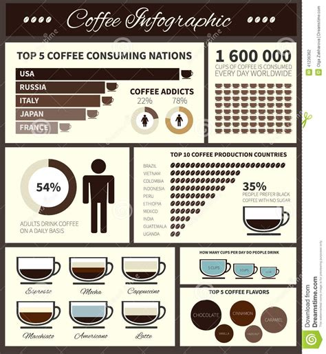 Coffee Infographic Stock Vector   Image: 41236362