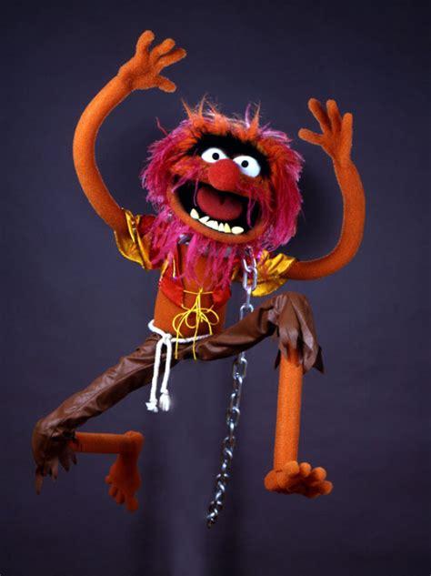 animal muppet wiki