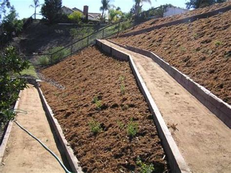 Garden Solutions by The 25 Best Steep Hillside Landscaping Ideas On