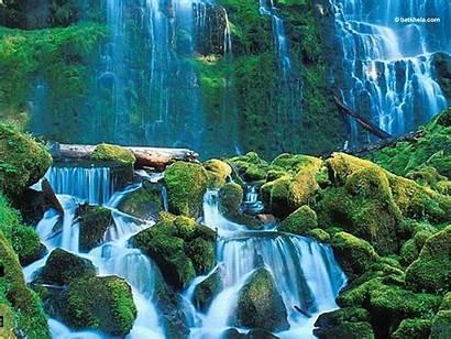 Nature Mother Wallpapers Fanpop Wall Naturaleza Fotos