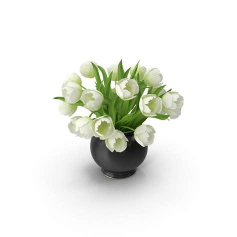 white tulips png images psds   pixelsquid