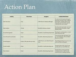 cheryl co case presentation With sales manager action plan template