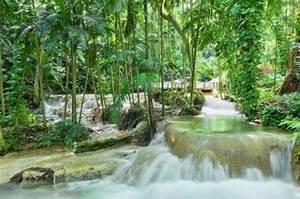 The enchanted garden jamaica ocho rios hotel reviews for The enchanted gardens jamaica