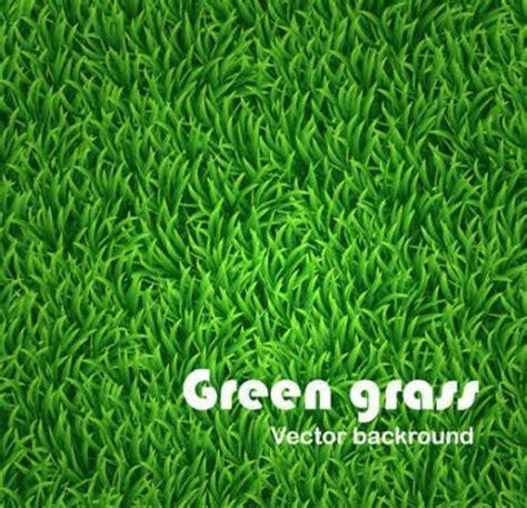 green grass vector background background vector art ai