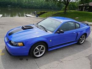 2004 Ford Mustang Mach 1 for sale #66106 | MCG