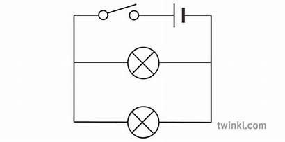 Parallel Circuit Bulbs Switch Battery Diagram Ks3