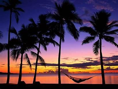 Sunset Island Wallpapers Backgrounds Palm Sun Islands