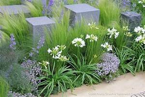 Plantes ornementales chelsea and pelouses on pinterest for Idee allee de maison 16 5 facons de mettre en scane les graminees detente jardin