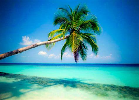 Linga Vacations: April 2011