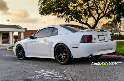 2004 Ford Mustang Gt by 2004 Ford Mustang Gt 20 Quot Giovanna Gianelle Wheels Davalu
