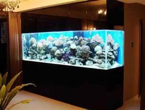 aquarium designer top 7 aquarium designs for your interior design