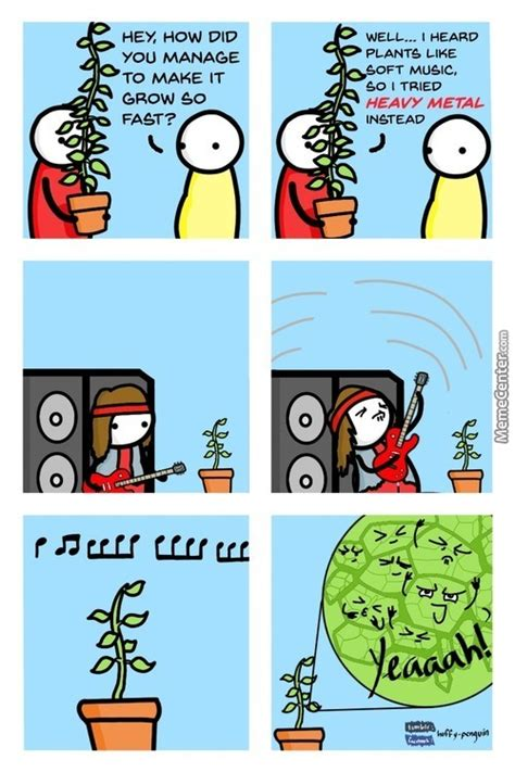 Plant Memes - plant memes best collection of funny plant pictures