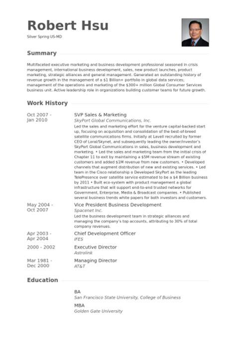 Vp Global Sales Resume by Vp Ventes Et Du Marketing Exemple De Cv Base De Donn 233 Es Des Cv De Visualcv