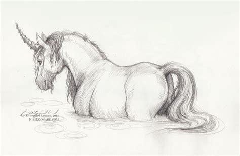 personal work trail   unicorn unicorns unicorn