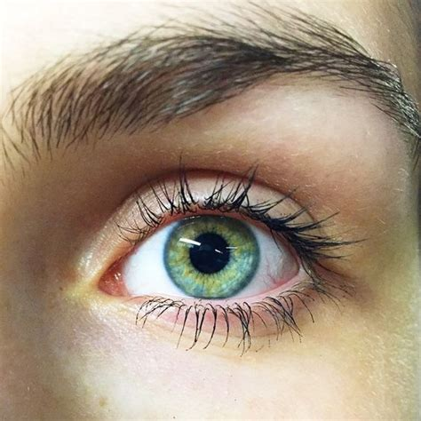 the 25 best eye color facts ideas on green