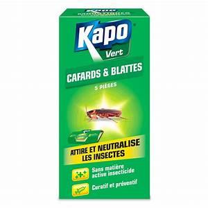 Piege A Cafard : pi ges glue sp cial cafards blattes insecticides kapo ~ Melissatoandfro.com Idées de Décoration
