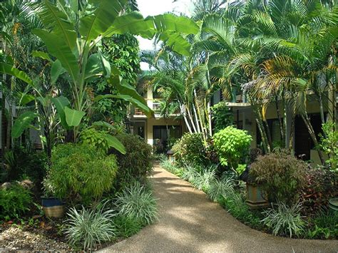 amazing tropical garden landscaping ideas tropical