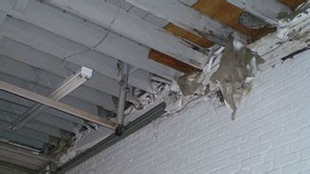 asbestos inspections removal east coast environmental