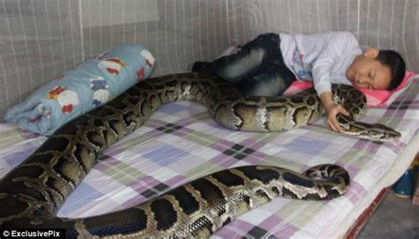 python bedding meet the boy 13 who sssssssleeps with the family
