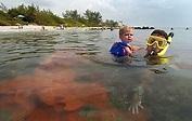 Guide to Boca Raton beaches - Sun Sentinel