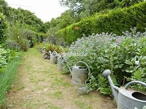 Quels Arbustes Pour Une Haie : quelle fleur planter au pied une haie ~ Premium-room.com Idées de Décoration