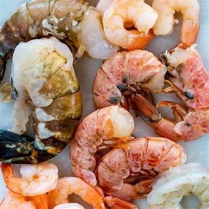 Shrimp Sizes Types Ingredients Cooking Guide Jessica