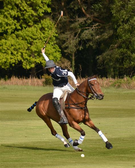 polo pony charlie carbonilla walton cup team argentinian proves playing tournament clegg sarah welsh hannah bred fifteen proved helped
