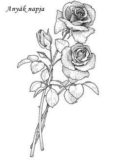 Rose Drawing Single Flower Outline Tattoo Stencil   Just