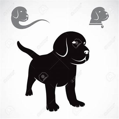 Labrador Clipart Puppies Puppy Vektorbild Retriever Av