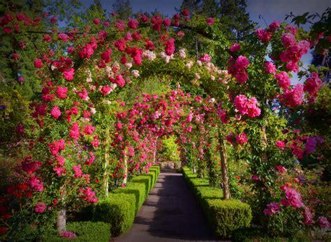 pictures of butchart gardens butchart gardens 22