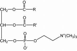 800-342-3595 | Lecithin, egg | Lipids and Biochemicals ...  Phosphatidylcholine