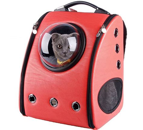 pet carriers adorable cat backpack will ruin your cat 39 s while