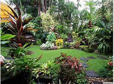 Best 25+ Tropical garden design ideas on Pinterest