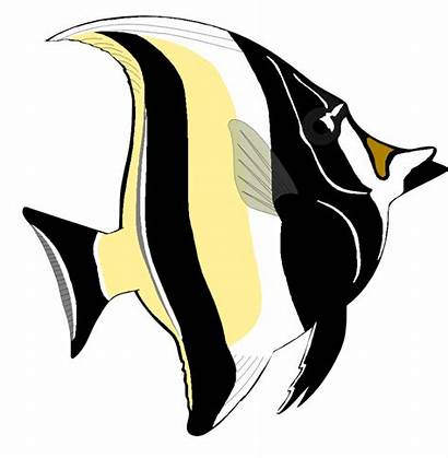 Angelfish Clipart Fish Angel Clip Tropical Animated