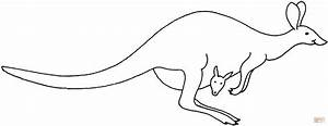 Hopping Kangaroo coloring page | Free Printable Coloring Pages